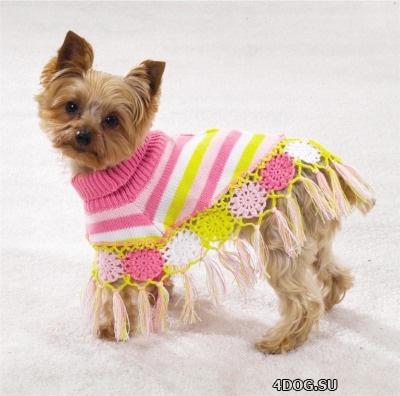 Как пошить одежду для собаки
