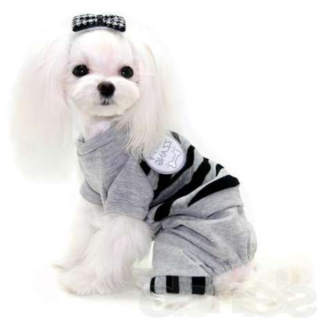 Одежда для собак дешево Интернет магазин дешевой